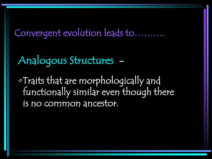 Convergent evolution leads to……….