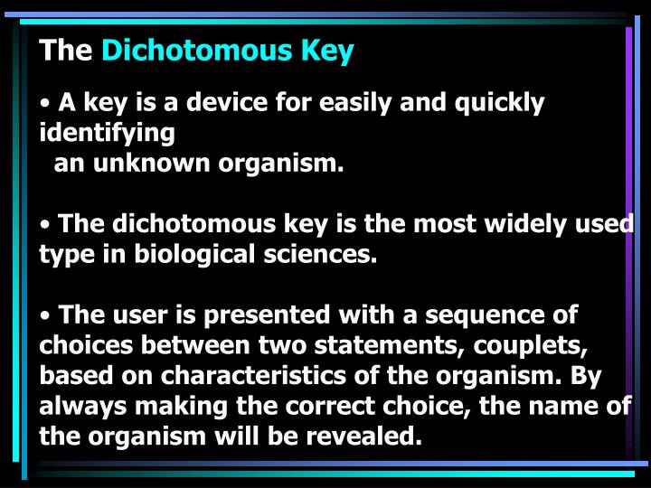 A key is a device for easily and quickly identifying