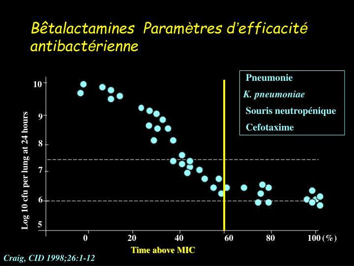 Bêtalactamines  Param