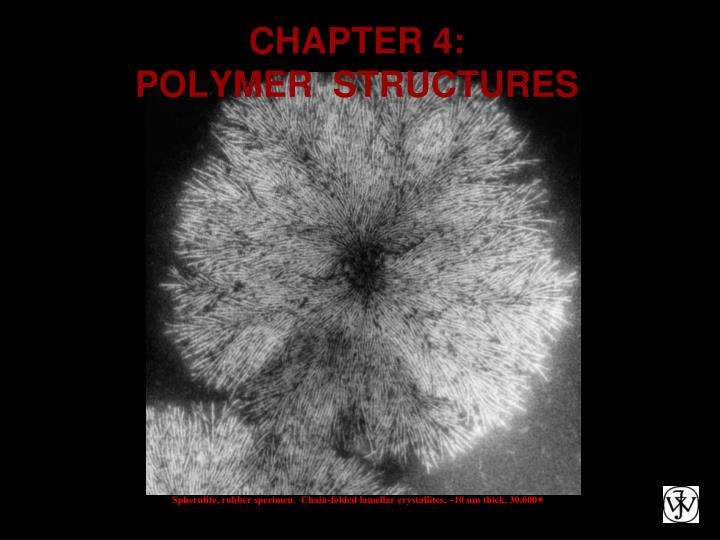 Chapter 4 polymer structures