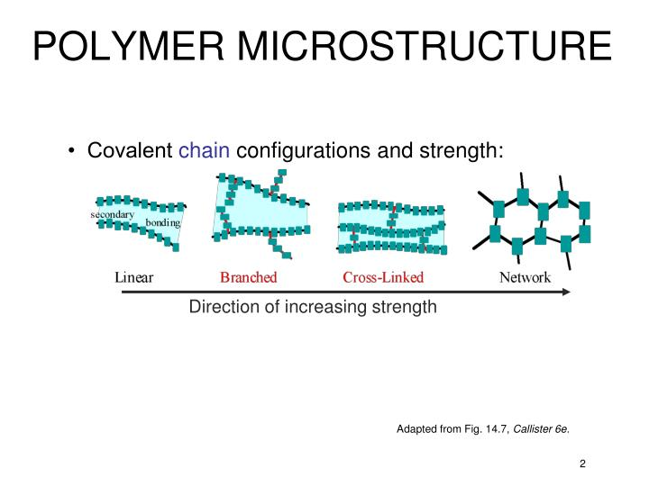 POLYMER MICROSTRUCTURE