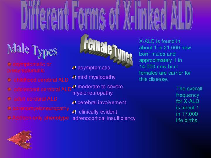 Different Forms of X-linked ALD