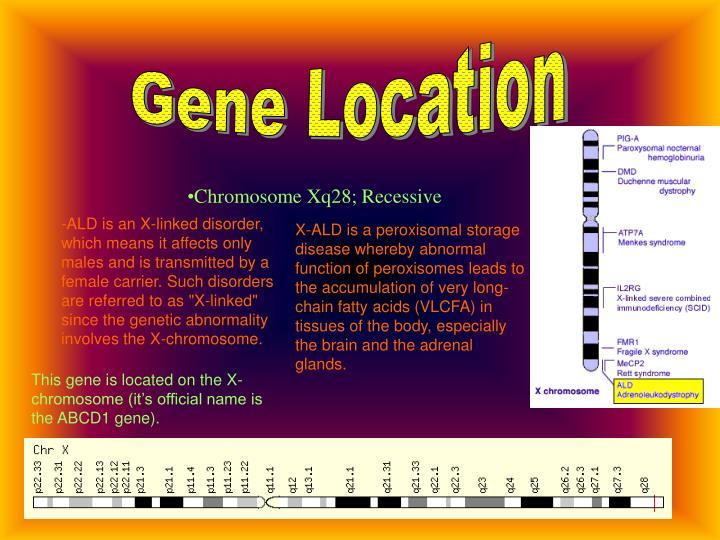 Gene Location