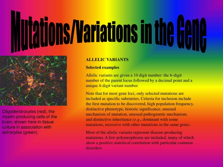 Mutations/Variations in the Gene
