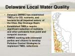 delaware local water quality1