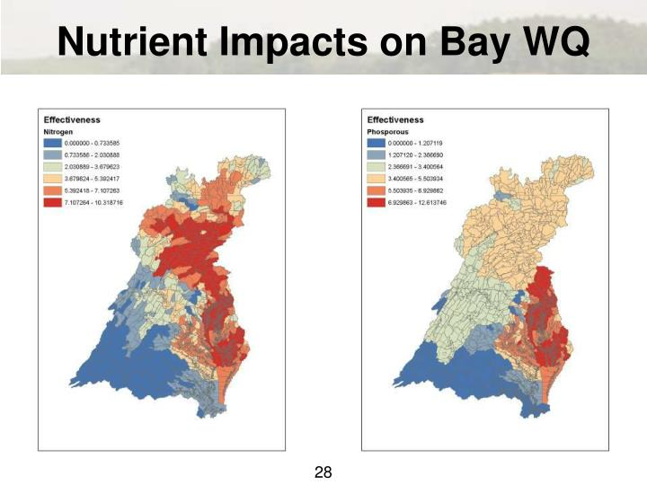 Nutrient Impacts on Bay WQ