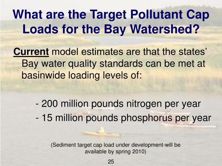 What are the Target Pollutant Cap Loads for the Bay Watershed?