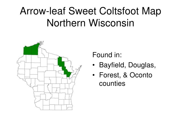 Arrow-leaf Sweet Coltsfoot Map Northern Wisconsin