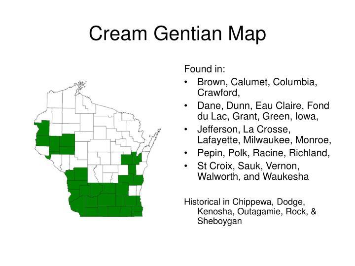 Cream Gentian Map
