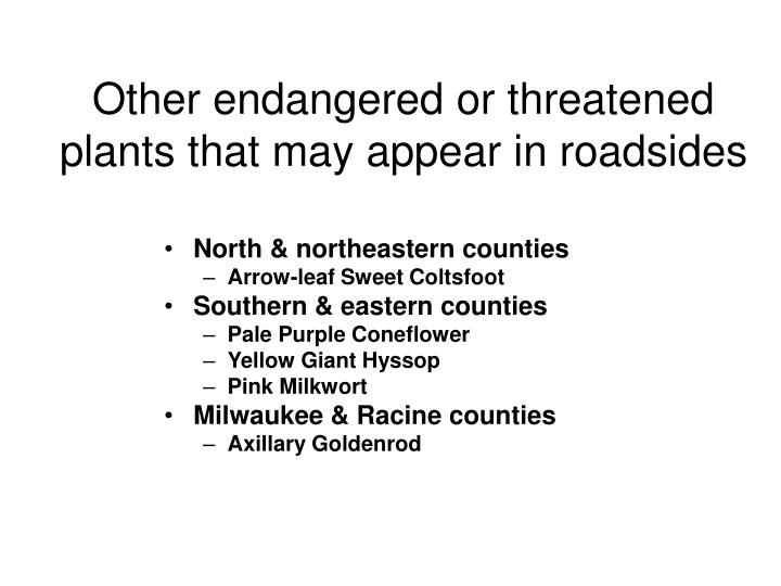 Other endangered or threatened plants that may appear in roadsides