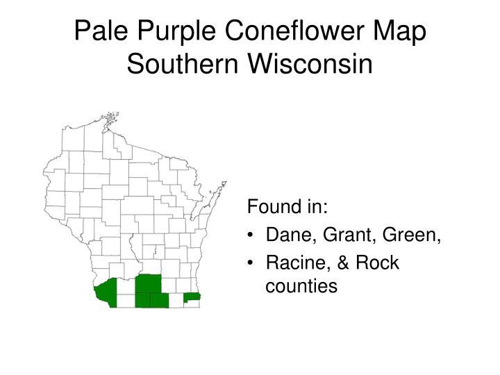 Pale Purple Coneflower Map