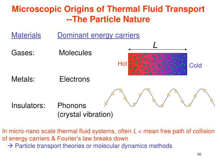 Microscopic Origins of Thermal Fluid Transport