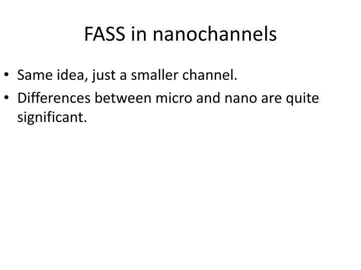 FASS in nanochannels