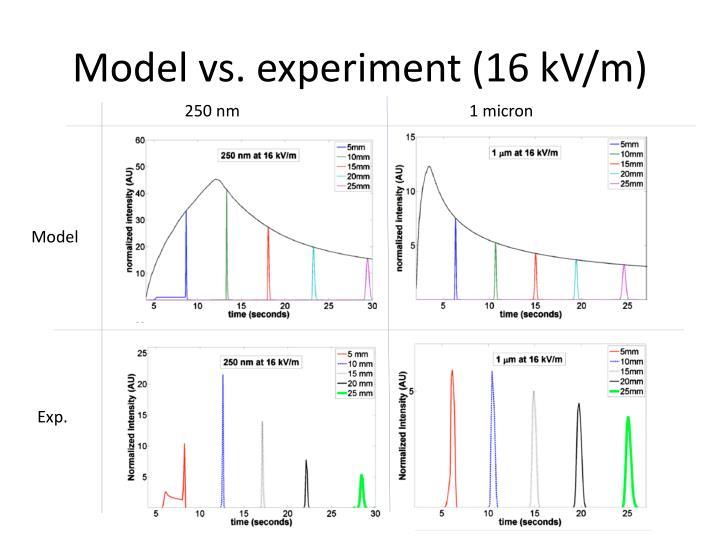 Model vs. experiment (16 kV/m)