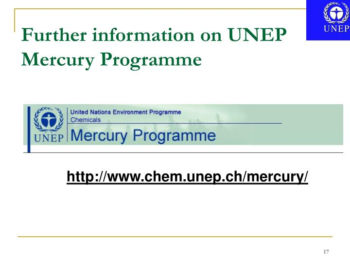 Further information on UNEP Mercury Programme