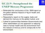 gc 23 9 strengthened the unep mercury programme