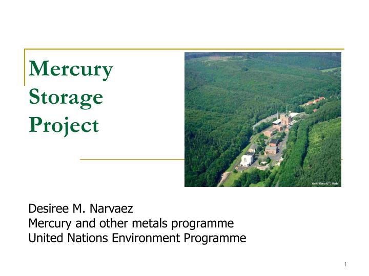 Mercury storage project