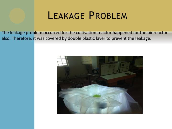 Leakage Problem