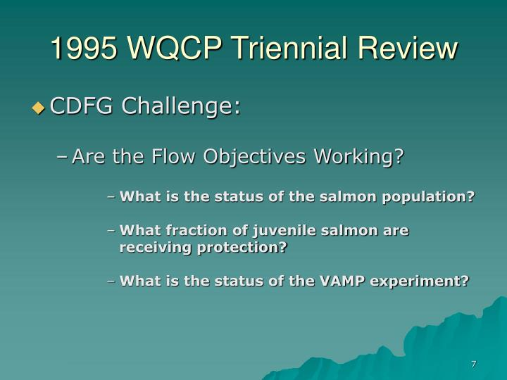 1995 WQCP Triennial Review