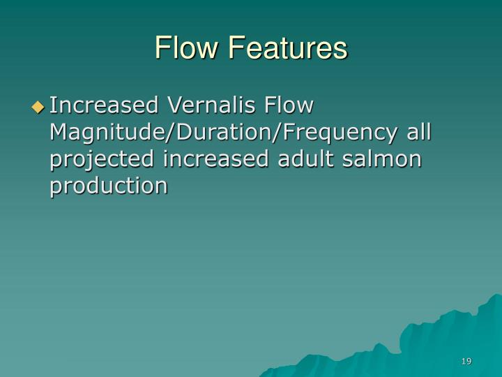 Flow Features