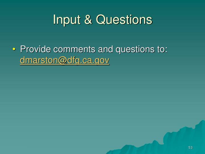 Input & Questions