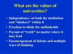 what are the values of universities