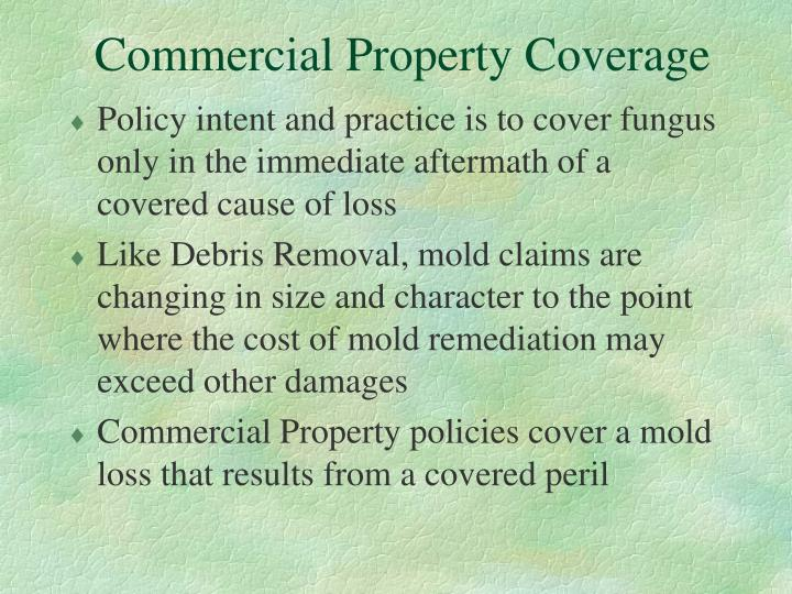 Commercial Property Coverage
