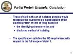 partial protein example conclusion