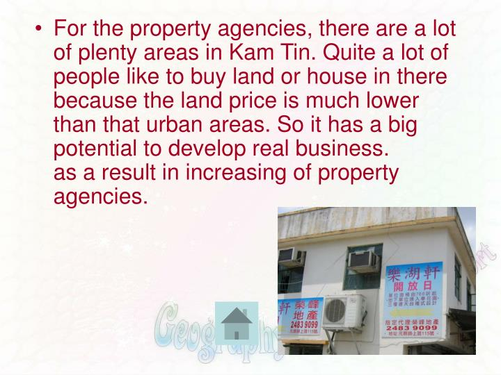 For the property agencies, there are a lot of plenty areas in Kam Tin. Quite a lot of people like to buy land or house in there because the land price is much lower than that urban areas. So it has a big potential to develop real business.
