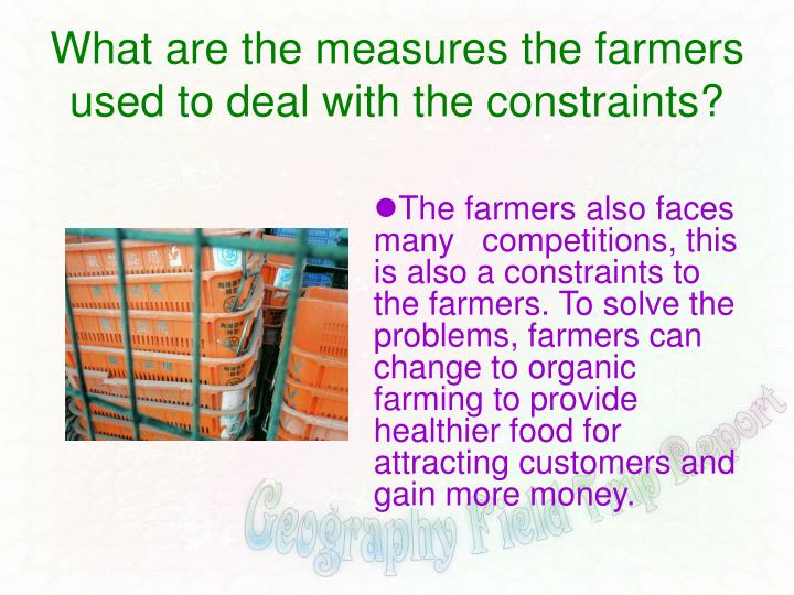 What are the measures the farmers used to deal with the constraints?