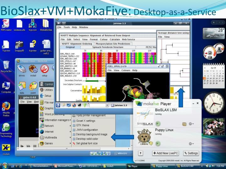 BioSlax+VM+MokaFive: