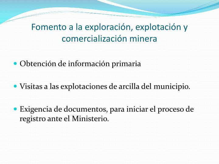 Fomento a la exploración, explotación y comercialización minera