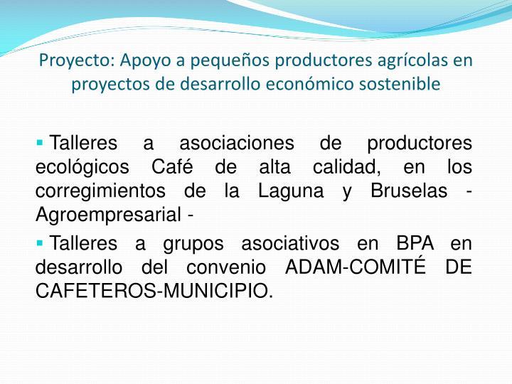 Proyecto: Apoyo a pequeños productores agrícolas en proyectos de desarrollo económico sostenible