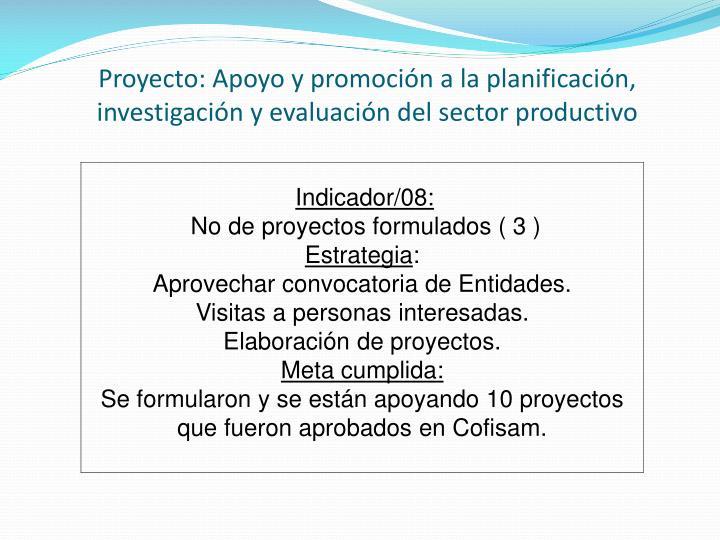 Proyecto: Apoyo y promoción a la planificación, investigación y evaluación del sector productivo