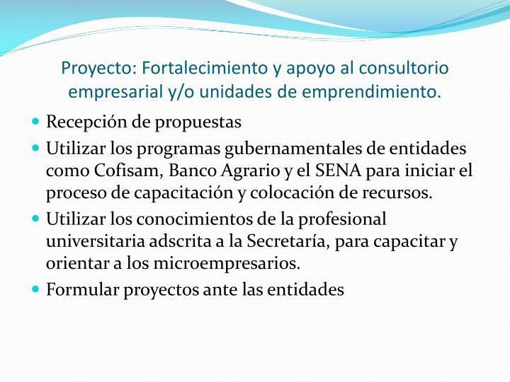 Proyecto: Fortalecimiento y apoyo al consultorio empresarial y/o unidades de emprendimiento.