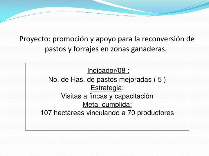 Proyecto: promoción y apoyo para la reconversión de pastos y forrajes en zonas ganaderas.
