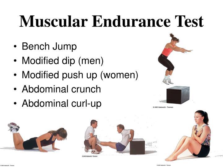 Muscular Endurance Test