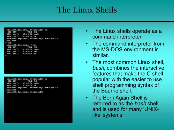 The Linux Shells