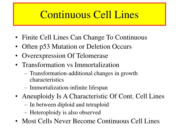 Continuous Cell Lines