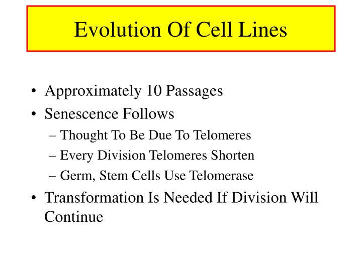 Evolution Of Cell Lines