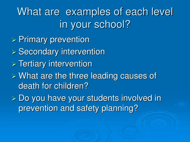 What are  examples of each level in your school?