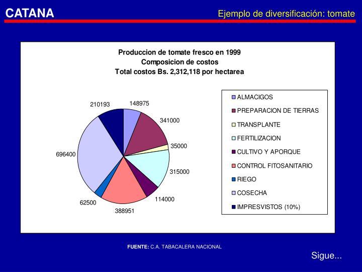 Ejemplo de diversificación: tomate