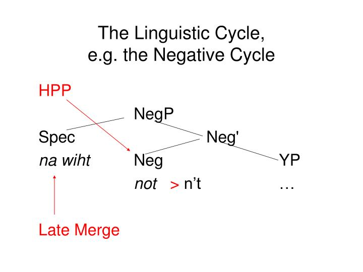 The Linguistic Cycle,