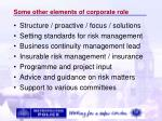 some other elements of corporate role