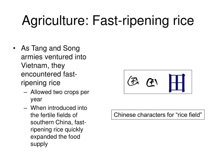 Agriculture: Fast-ripening rice