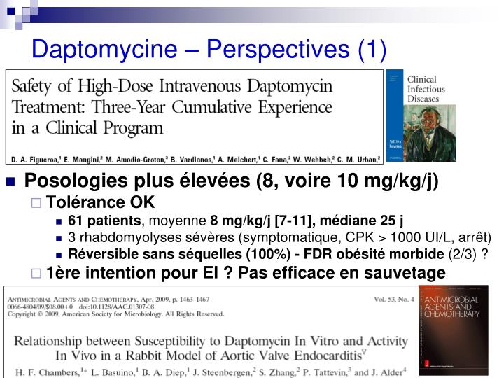 Daptomycine – Perspectives (1)