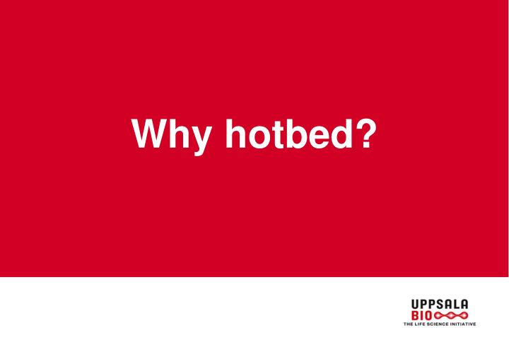 Why hotbed?