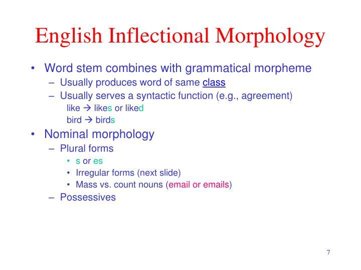 English Inflectional Morphology