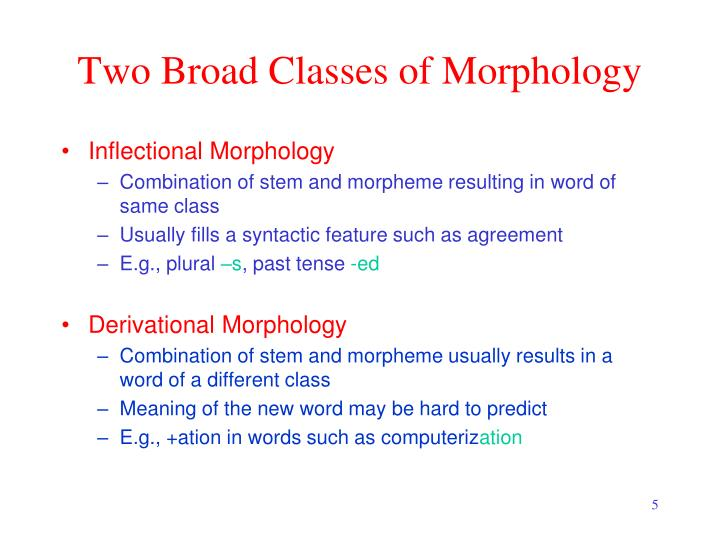 Two Broad Classes of Morphology
