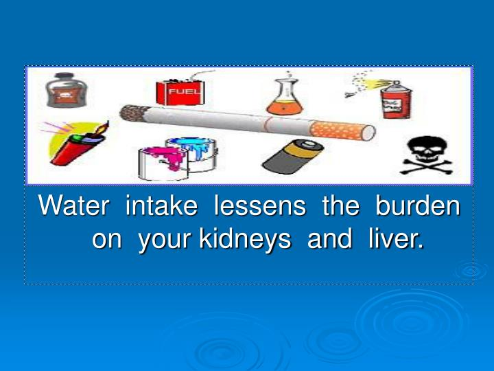 Water  intake  lessens  the  burden  on  your kidneys  and  liver.